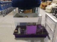 w sklepie zoologicznym